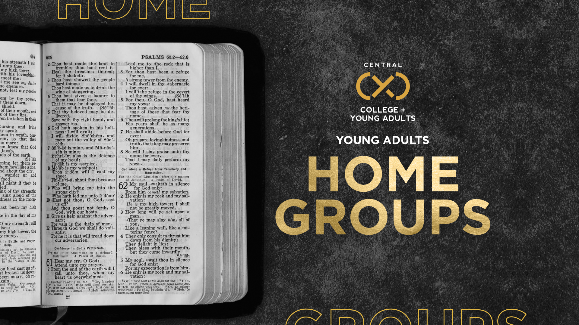 Young Adult Home Groups