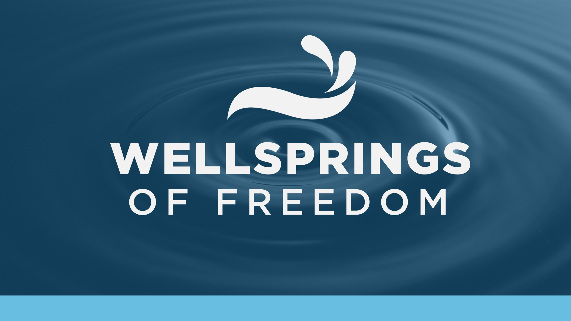 Wellsprings of Freedom